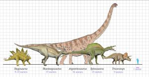 Here's a picture with more detail. Note that the largest sauropod (long-necked dinosaur) is dfferent--this is the subject of some controversy! Image credit: Zachi Evenor