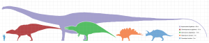 The largest dinosaurs, on the other hand, were easily bigger than a bus! Image credit: Matt Martyniuk
