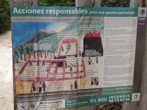 "A sign on the door about responsible ""slash and burn"" agriculture--in Spanish, of course."